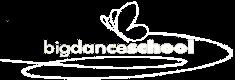 Bigdance School Cecina